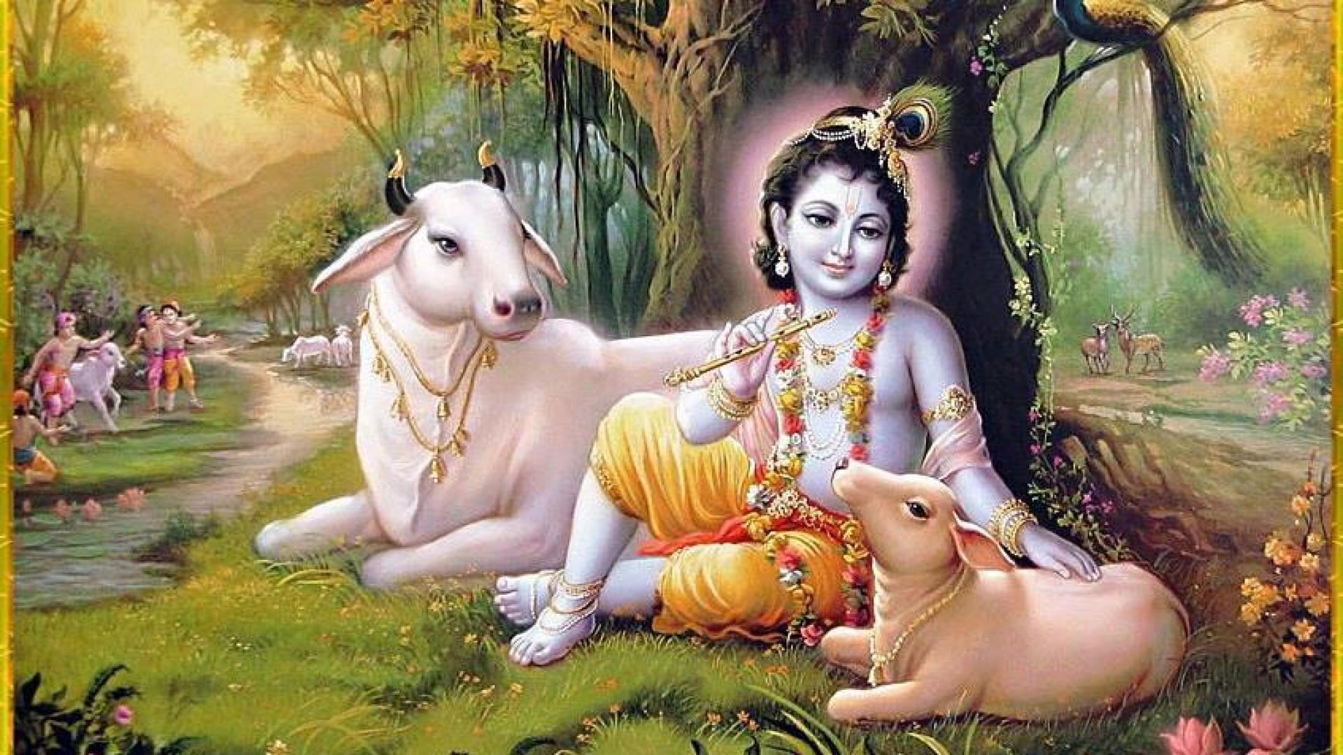 sri krishna 3d wallpaper